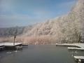 Jezioro Rogozno - lowisko licencyjne  PZW