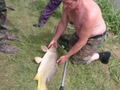 Największa ryba zawodów karp 80 cm