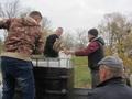 5.Ryby trafiły do stawu w dobrej kondycji – pogoda sprzyjała; temperatura powietrza była poniżej 10 stopni.