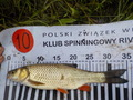 Klub Spinningowy River Wolow