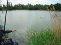 Zwycięzca I Tury Mistrzostw Koła Kolega Piotr Kaziur w trakcie podbierania złowionej ryby