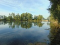 """Widok na łowiska Nr 619 Sudół """"Schodki"""" od wjazdu na łączkę w kierunku kanału."""