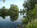 """Widok na """"Kanałl"""" na łowisku Nr 619 Sudół z drogi łączącej """"Mostek"""" z """"Schodkami""""."""