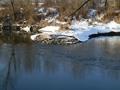 Krótki rekonesans łowiska Nr 033 rzeka Odra