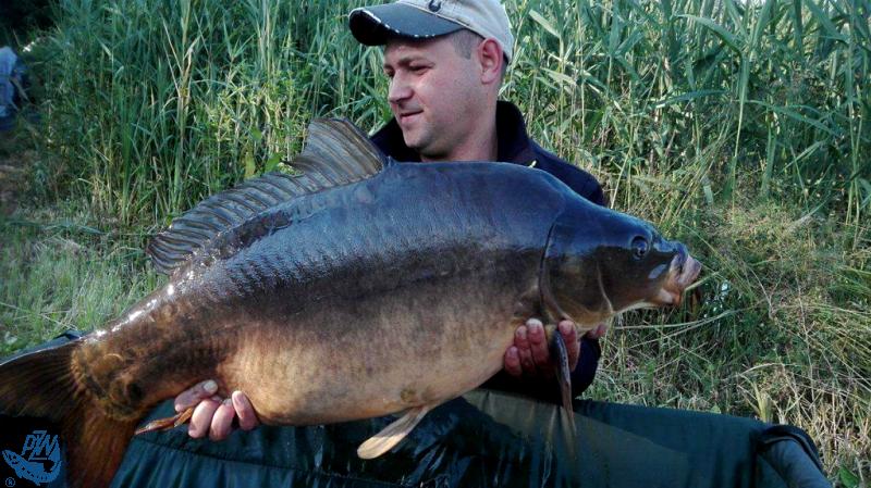 Andrzej Janosz prezentuje złowionego karpia o wadze 16,300 kg<br /><i>autor: Udostępnili Dariusz Paradowski i Andrzej Janosz</i>