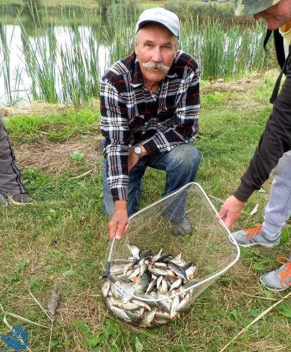Benedykt Galicki prezentuje złowione ryby podczas III Spławikowych Mistrzostw Raciborza Weteranów 55+<br /><i>autor: Maciej Kajstura</i>