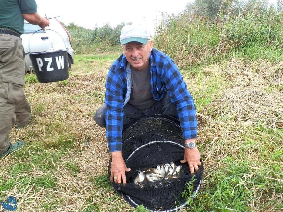 Bernard Lepiorz prezentuje złowione ryby podczas III Spławikowych Mistrzostw Raciborza Weteranów 55+<br /><i>autor: Maciej Kajstura</i>