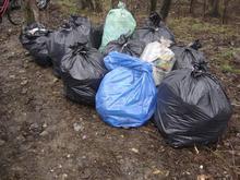 Efekt sprzątania brzegu Pszczynki w Brzeźcach