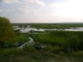 Kolo PZW Relax w Bialymstoku
