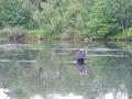 30th FIPS-Mouche World Fly Fishing Championship, 14-21 June 2010, Lesko-Polańczyk, Poland
