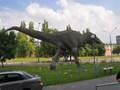PZW Katowice Rejon III