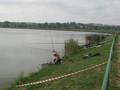 Okreg PZW w Kielcach