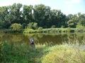 Kolo PZW nr 48 BELONA Wroclaw