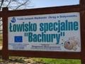 Lowisko Specjalne BACHURY