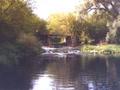 Rzeka Bzura - okolice miejscowości Sobota