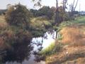 Rzeka Pisia. Odcinek pomiędzy zbiornikami Hamernia i Korytów.