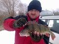 Okoń 42 cm - 1,10 kg Glinianki Horodyskie - 24.02.2013 r.