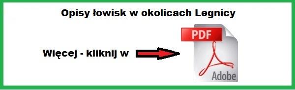 opis_lowisk_w_okolicach_legnicy.jpg