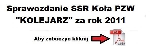 sprawozdanie_ssr_za_2011.jpg