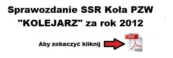 sprawozdanie_ssr_za_2012.jpg