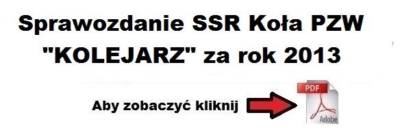 sprawozdanie_ssr_za_2013.jpg