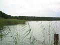 Łowisko rybne - zwłaszcza latem
