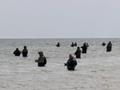 Bałtyk, Jastrzębia Góra, Maj 2021; są wędkarze, to znak że ryba bierze