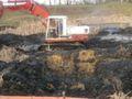 Oczyszczanie stawu 13.04.2012