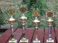 Puchary dla zwycięzców