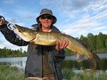 Wędkarz:  Wojtek Ryba: Szczupak Esox lucius Długość: 91 cm Data: 29 maja 2008 Miejsce: Noteć - Krzyż Wlkp