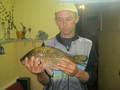 Rzeka Orla, sierpień 2012 godz. 20:00, przynęta: kukurydza z puszki (zwykła)  karaś waga 1,45 kg, dł. 43 cm, wędka: bat 4 m, żyłka: plecionka 0,12