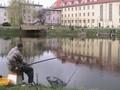 Wędkarz łowiący na tyczkę
